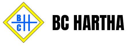 BC Hartha e.V.